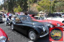Concours d' Elegance Car Show