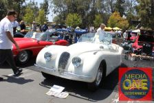 concours d' elegance greystone mansion photo by media one